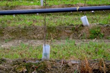 Installazione di impianti di irrigazione